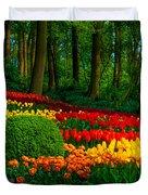Colorful Corner Of The Keukenhof Garden 4. Tulips Display. Netherlands Duvet Cover