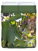 Colorful Grapes Growing On Grapevine Duvet Cover