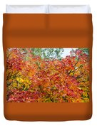 Colorful Leaves In Autumn Duvet Cover