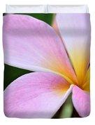 Colorful Pink Plumeria Flower Duvet Cover