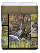 Colorful Sandhill Crane Collage Duvet Cover