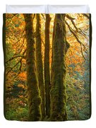 Colors In The Rainforest Duvet Cover by Adam Jewell