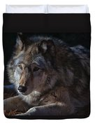 Colors Of A Wolf Duvet Cover