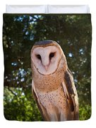 Common Barn Owl 1 Duvet Cover