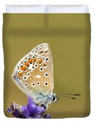 Common Blue Duvet Cover