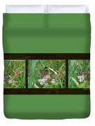 Common Buckeye Butterfly - Junonia Coenia Duvet Cover