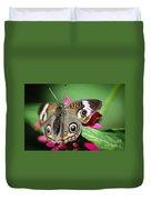 Common Buckeye Junonia Coenia Duvet Cover