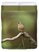 Common Chaffinch Duvet Cover