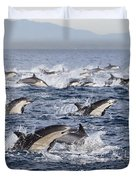 Common Dolphins Surfacing San Diego Duvet Cover by Richard Herrmann