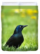 Common Grackle Duvet Cover by Christina Rollo