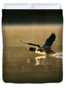 Common Loon Pictures 147 Duvet Cover