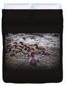 Common Merganser With Chicks Duvet Cover