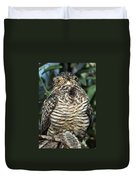 Common Nighthawk Napping Duvet Cover