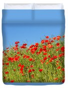 Common Poppy Flowers  Duvet Cover