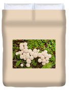 Common Puffball Mushrooms Lycoperdon Perlatum Duvet Cover
