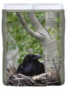 Common Raven Incubating Eggs In Nest Duvet Cover