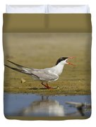 Common Tern Sterna Hirundo Duvet Cover by Eyal Bartov