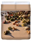Conch Collection Duvet Cover