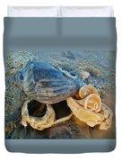 Conch Shells Hatteras 5 10/17 Duvet Cover