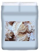 Conches Duvet Cover