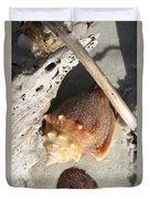 Conchs With Driftwood I Duvet Cover