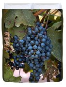 Concord Grapes Duvet Cover