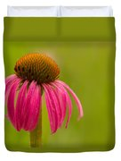 Coneflower - Summer Color Duvet Cover
