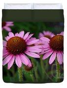 Coneflowers - Echinacea Purpurea Duvet Cover