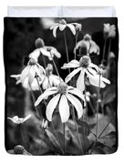 Coneflowers Echinacea Yellow Bw Duvet Cover by Rich Franco