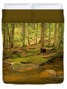 Cook Forest Rocks And Roots Duvet Cover