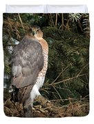 Coopers Hawk In Predator Mode Duvet Cover