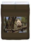 Coopers Hawk Pictures 124 Duvet Cover