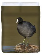 Coot On A Log Duvet Cover
