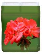 Coral Geraniums Duvet Cover