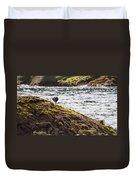 Cormorant - Montague Island - Australia Duvet Cover