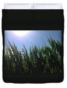 Corn Maze 02 Duvet Cover