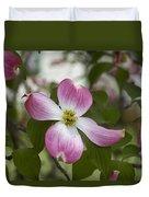Cornus Florida - Pink Dogwood Blossoms Duvet Cover