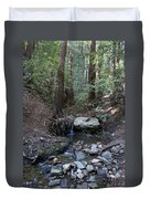 Corte Madera Creek On Mt. Tam In 2008 Duvet Cover