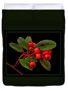 Cotoneaster Duvet Cover
