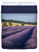 Cotswolds Lavender Duvet Cover