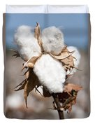 Cotton Bolls  Duvet Cover