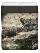 Cougar Spotted Me Duvet Cover