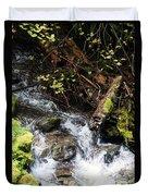 Covell Creek 4 Duvet Cover