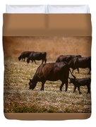 Cow And Calf Grazing Duvet Cover