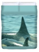Cow Orca And Her Calf Duvet Cover