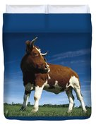 Cow Standing In Field Germany Duvet Cover