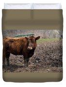 Cows  Duvet Cover