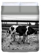 Cows Coming And Going Duvet Cover