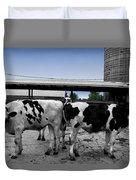 Cows Peek A Boo Duvet Cover