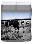 Cows Three In One Duvet Cover